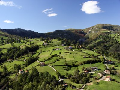Visita Cuevas Monte Castillo y Valles Pasiegos 8h