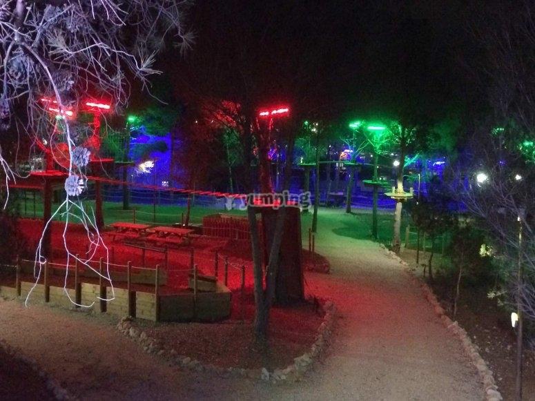 De noche en el parque arboreo