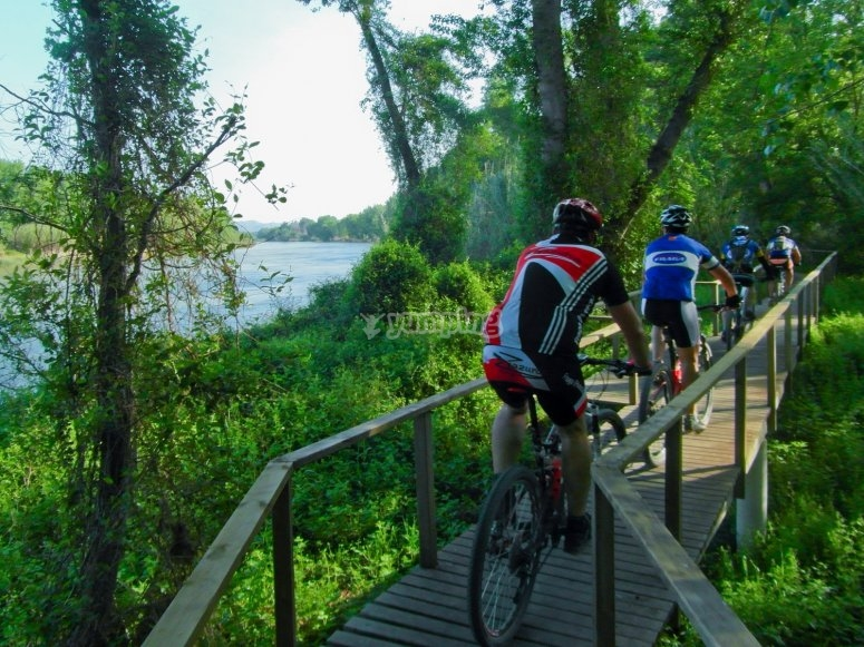 Bike Route in Aiguabarreig