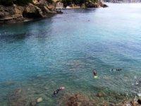 在海滩上潜水
