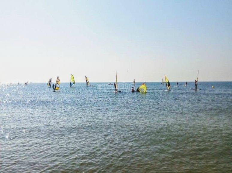 practicando windsurf en compania