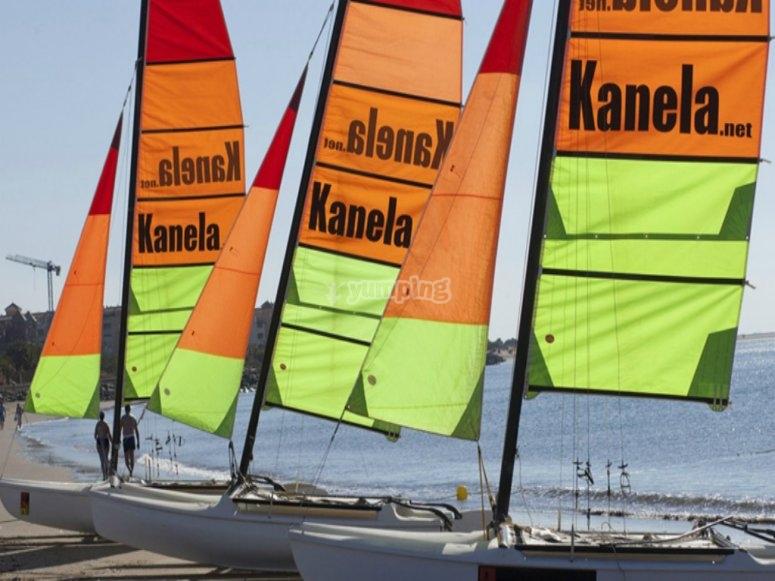 nuestros catamaranes.