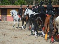 Equitación profesional