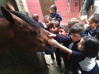 Peques acariciando al caballo