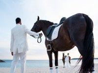 Sesión de fotos novios con caballo