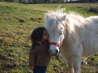 Amor a los caballos