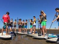 Clase estática de paddle surf en la orilla