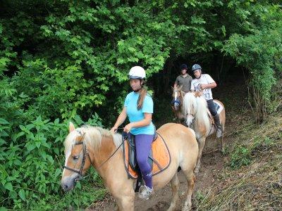 Ruta a caballo Vall de Bas con clase y picapica 2h