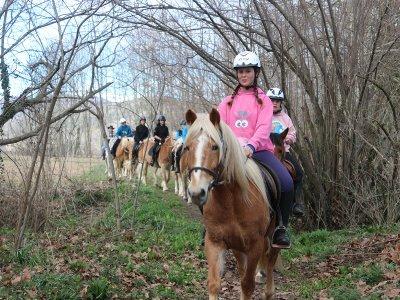 Paseo a caballo Vall d'en Bas 1h pica-pica y clase