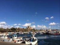 马略卡岛港口