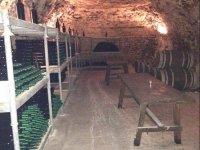 Visita cuevas + degustación vino Colmenar de Oreja