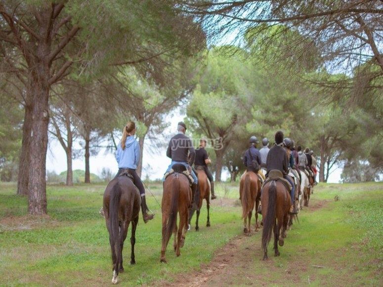 Horseback trip in Pisuerga