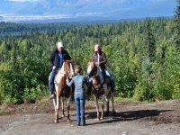 骑马与监视器