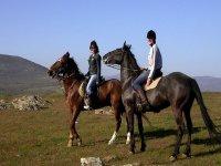 Horseca in Huesca