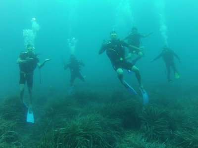 Portocolom Diving Club Buceo