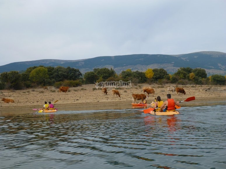 Kayaks en el embalse