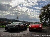 Gift driving in Ferrari