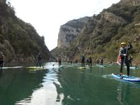 在桨冲浪板上划桨