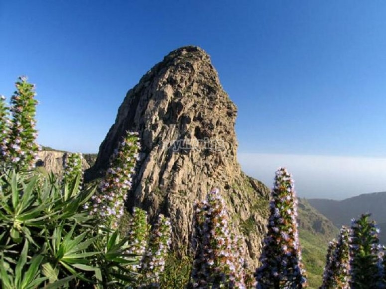Vistas de la excursion en La Gomera