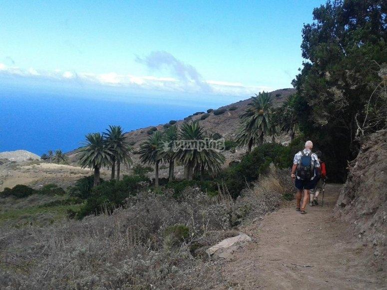 Visita La Gomera