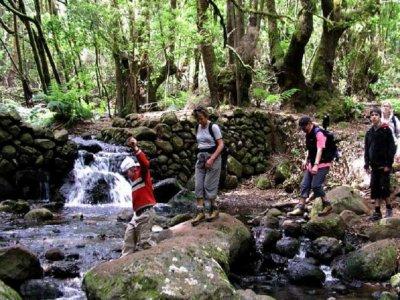 Senderismo en El Cedro La Gomera desde Santiago