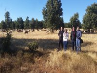 Tour avistamiento fauna