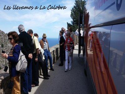 Tomir Visitas Guiadas