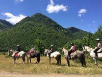 不同的路线古道骑马与香格里拉森达