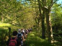 Curso avanzado de Nordic Walking en País Vasco 3h