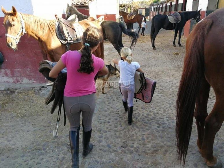 preparando nuestros caballos
