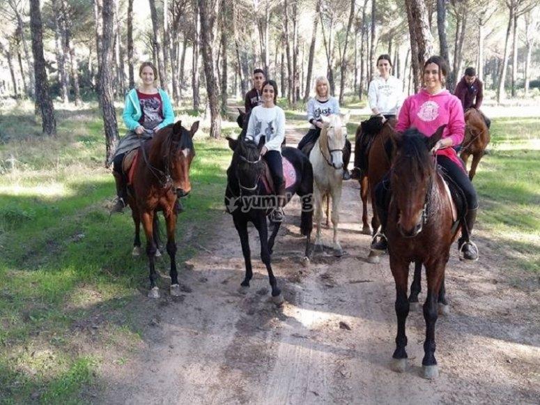 Horse riding tour through the fields