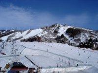 本赛季的雪景意见