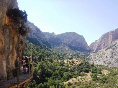 远足和高空滑索 El Madroñal 周末