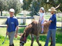 Visita a ganadería en Morille y comida para niños