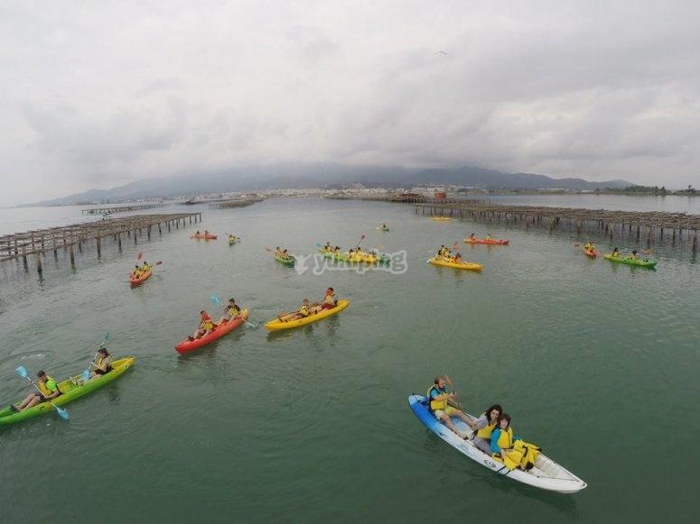 Alfacs湾皮划艇之旅在塔拉戈纳