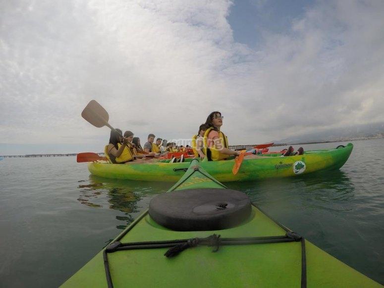 蚌蚌蚌皮艇皮艇