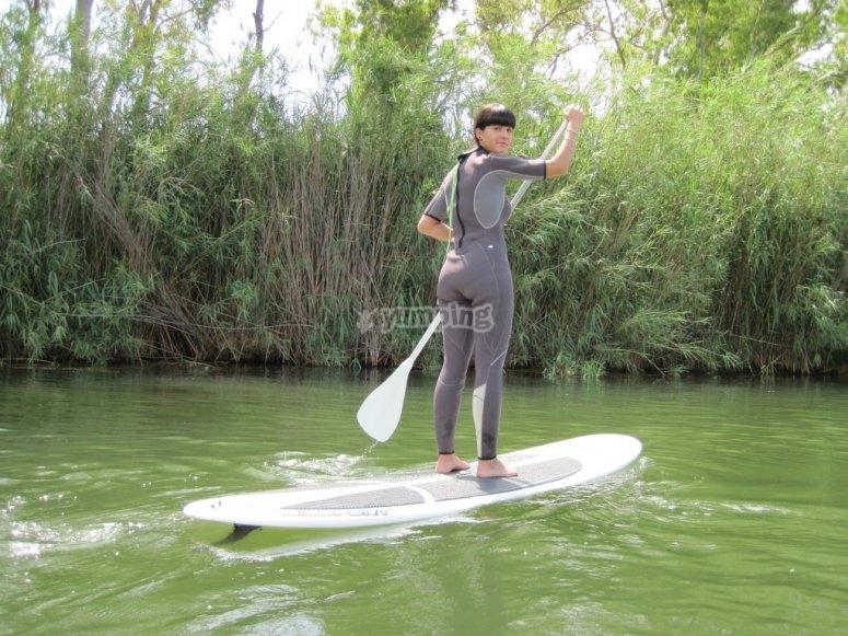 在Delta del Ebro -999划桨冲浪租赁 - 在Sant Carles delaRápita划桨冲浪材料
