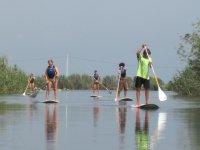 Alquiler material paddle surf en Delta del Ebro 1h
