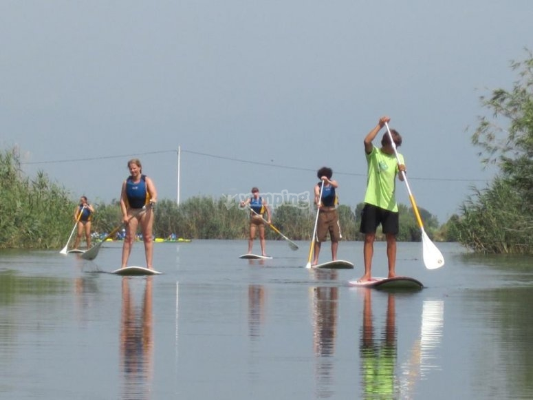 SUP in Delta del Ebro