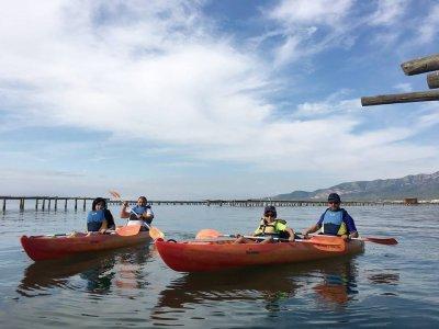 Alquiler de kayak doble o triple Delta del Ebro 3h