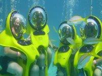 Bob Diving Blog