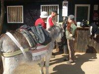 preparando la expedición en burro