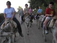 little ones riding donkey