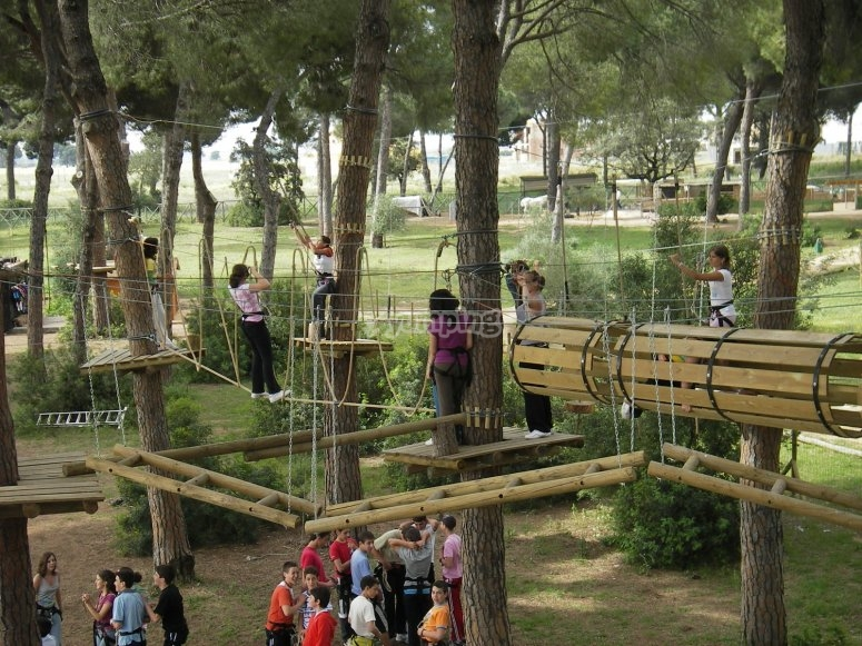 Zip lines for companies in Bosque Suspendido