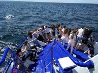 Asomados al mar en la cubierta