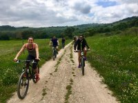 On the trail with bicycles