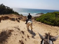 Arriving at the beach with the horses