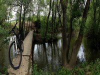 Bicycle along the river