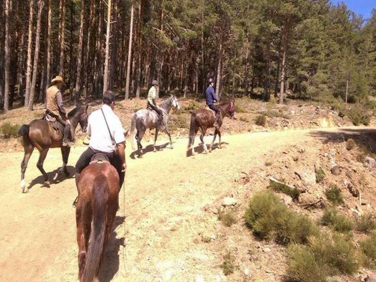 Con la familia a caballo