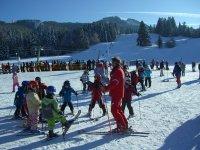 Jornadas de esqui